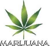 marijuana picture