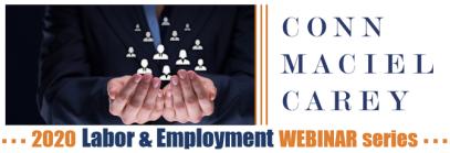 2020 Employment Webinar Series Banner Standalone